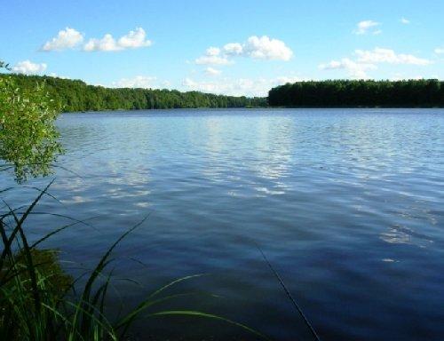 «Фундэкс» обустроит базу отдыха «Правдинское озеро»