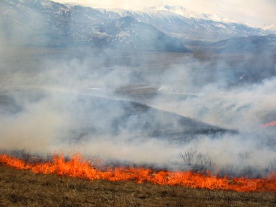 Винтовые сваи «Фундэкс» защитят от осенних пожаров