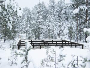 В компании «Фундэкс» идет месяц зимних скидок