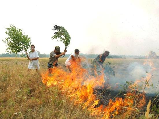 Винтовые сваи «Фундэкс» защитят от огня