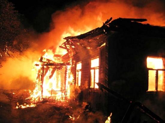 От ущерба, вызванного ландшафтными пожарами, спасет технология «Фундэкс»