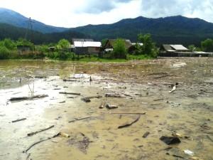 Технология «Фундэкс» защитит Алтай от последствий наводнений