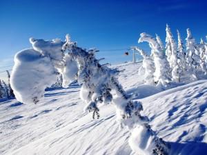 «Фундэкс» предоставит свою технологию канадцам для развития горнолыжного курорта на юге Кемеровской области