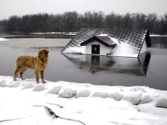 Защита от зимнего паводка – фундаменты на винтовых сваях «Фундэкс»