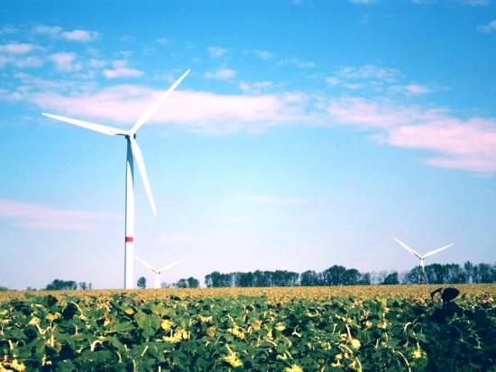Объекты эко-энергетики опираются на свайно-винтовые фундаменты  «Фундэкс»