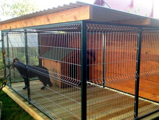 Винтовые сваи «Фундэкс» и вольеры для животных